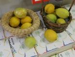 Limones en la librería Maruzen de Kyoto
